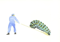 'Shrine sweeper and caterpillar', 2010, watercolour on 300gsm Arches, 14.9cm x 21.1cm